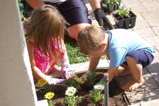 Gage was a toddler when he started working in the garden. (Mal, Gage & Greg planting)